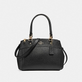 25395 mini brooke carryall