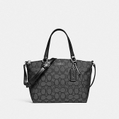 27580 mini kelsey satchel