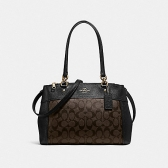 25396 brooke carryall