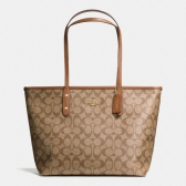 36876 signature city zip tote