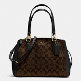 58291 small christie carryall in signature