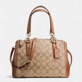 58290 signature mini christie carryall