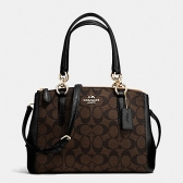 58290 mini christie carryall in signature